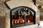 Acanthus Arched Fireplace Doors